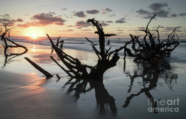 Bulls Island Photograph - Dawn Reflections by DiFigiano Photography