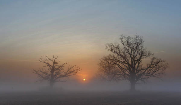 Somerset County Photograph - Dawn by Richard Pope