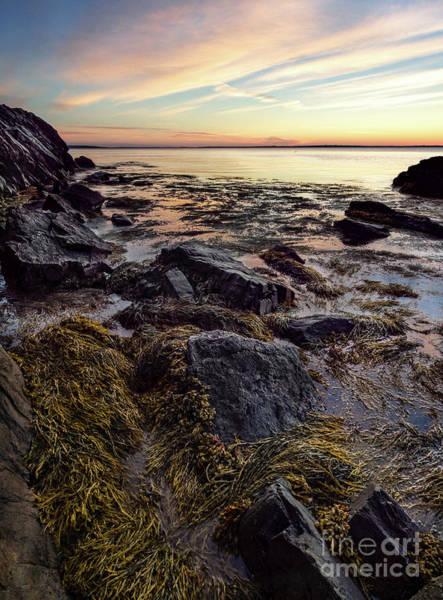 Photograph - Dawn, West Penobscot Bay, Camden, Maine  -43842-43845 by John Bald