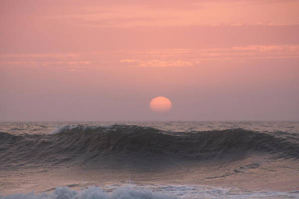 Photograph - Dawning Pink by Robert Banach
