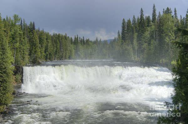 Photograph - Dawson Falls by David Birchall