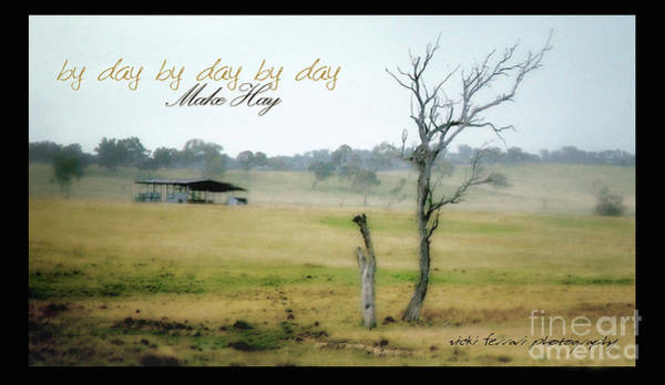Photograph - Day By Day Make Hay by Vicki Ferrari