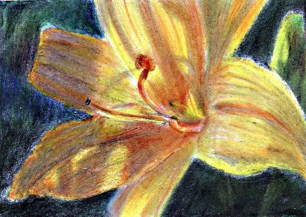 Atc Painting - Day Lily Close Up by Jimmie Trotter