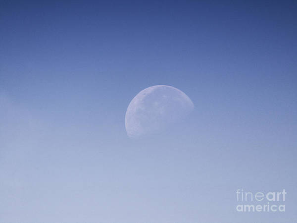 Photograph - Day Time Moon by Robert Knight