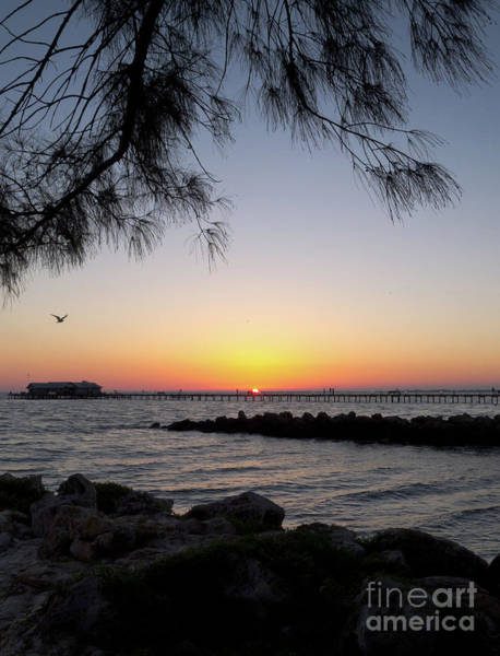 Photograph - Daybreak, Anna Maria Island City Pier #30091 by John Bald