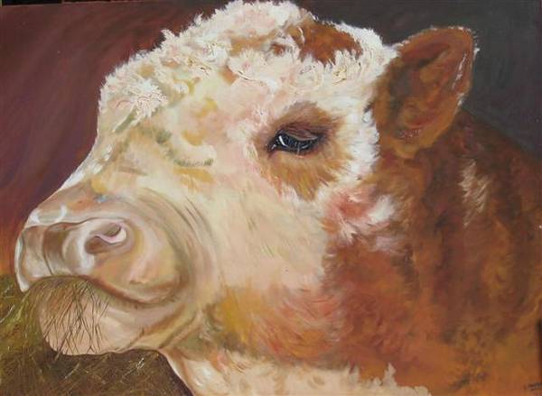 Hereford Bull Painting - Daylands Bull by Susan Heather