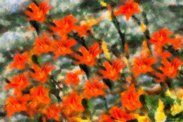 Photograph - Daylilies Impressionistic by Anna Louise