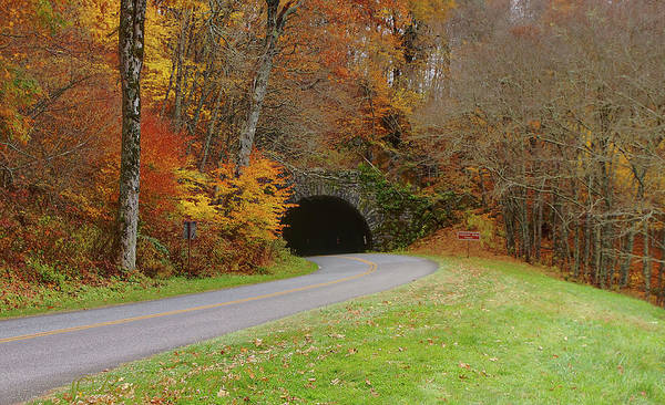 Photograph - Lickstone Tunnel by Ree Reid