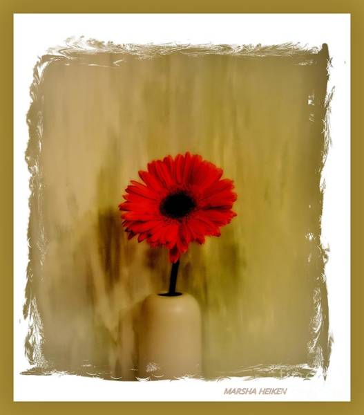 Wall Art - Photograph - Dazzling Red Gerber Daisy by Marsha Heiken