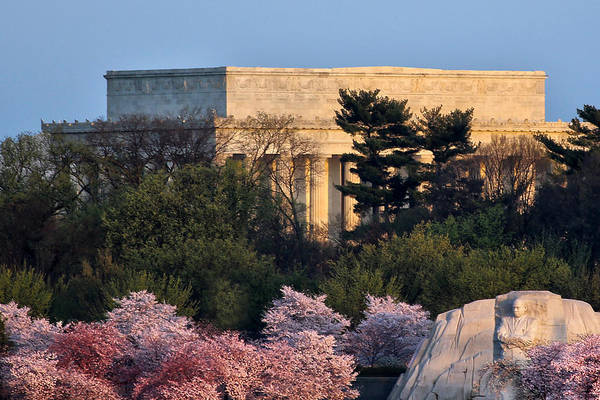 Wall Art - Photograph - Capitol Spring Morning by Mitch Cat