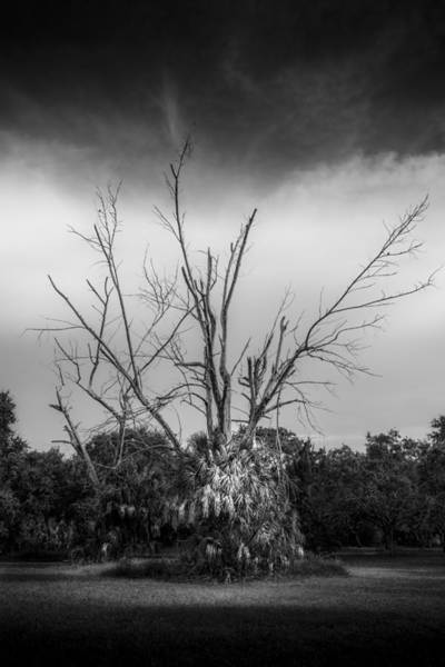 Petersburg Photograph - Dead End B/w by Marvin Spates