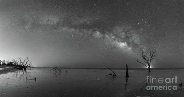Wall Art - Photograph - Dead Forest Milky Way Bw by Michael Ver Sprill