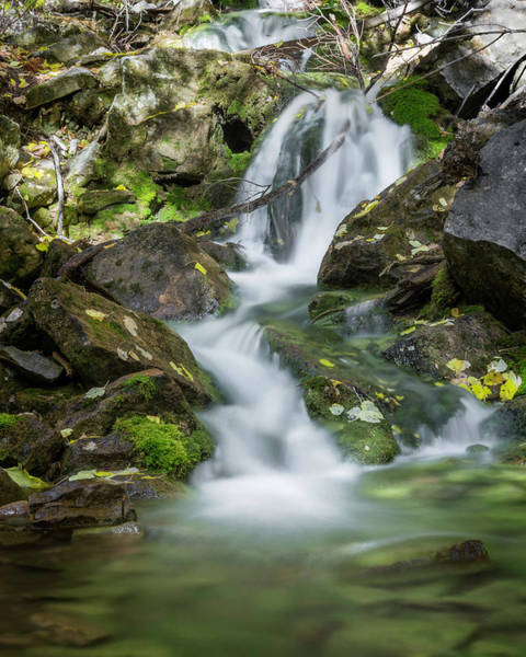 Photograph - Dead Horse Creek Cascade by Jemmy Archer