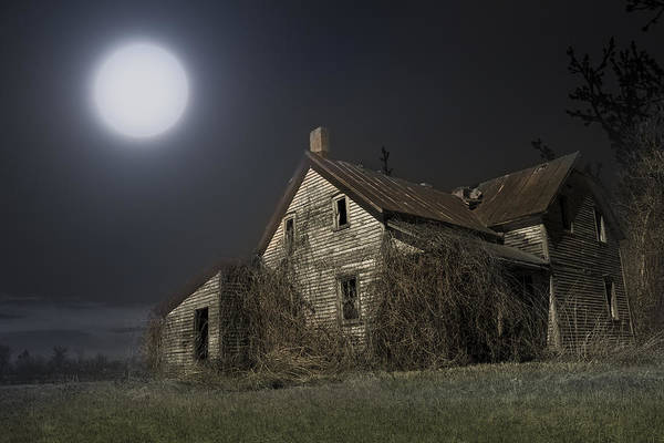 Wall Art - Photograph - Dead House by Michel Emery