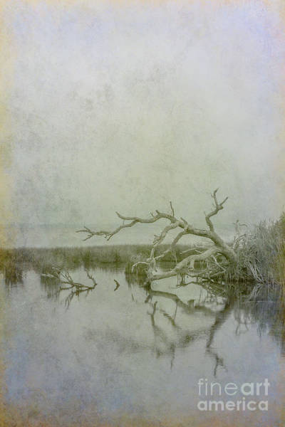 Wall Art - Digital Art - Dead In The Water by Randy Steele