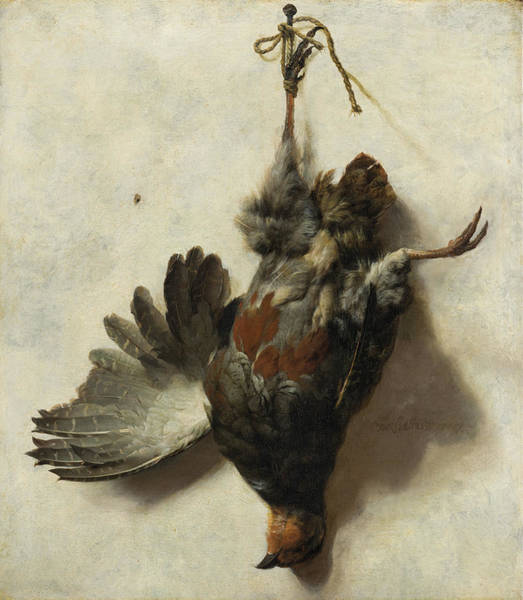 Wall Art - Painting - Dead Partridge Hanging From A Nail by Jan Baptist Weenix