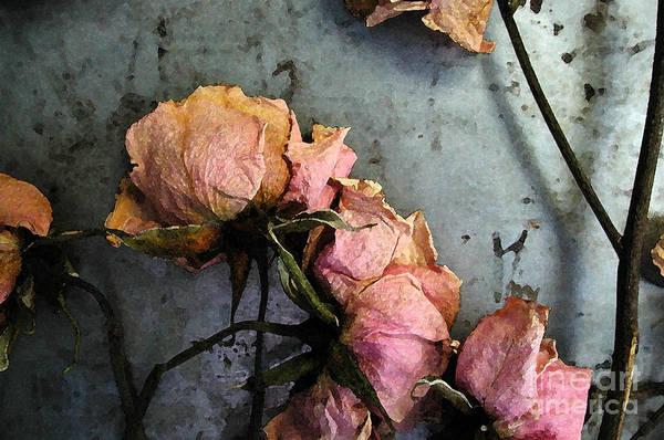 Digital Art - Dead Roses 3 by Kathi Shotwell