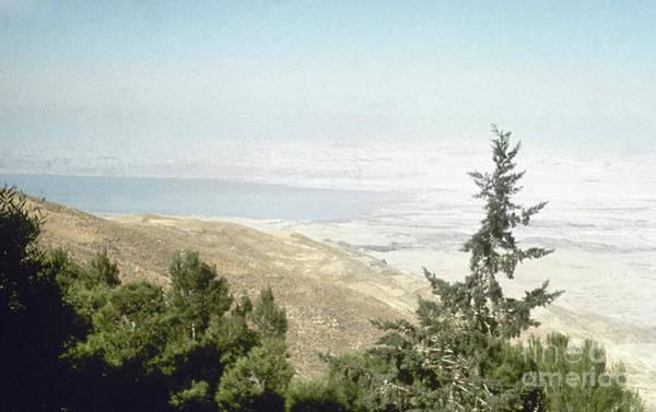 Photograph - Dead Sea by Granger