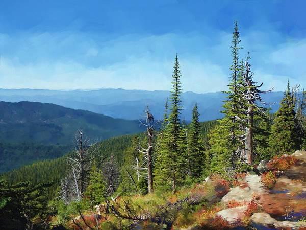 Pine Valley Digital Art - Dead Trees by Debra Baldwin