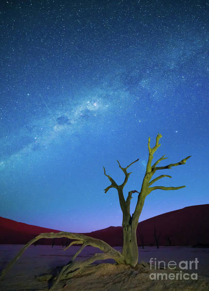 Nps Photograph - Deadvlei Milky Way by Inge Johnsson