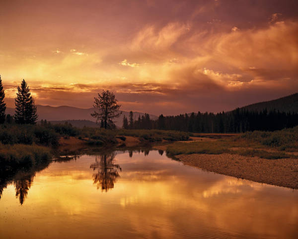 Photograph - Deadwood River Sunrise by Leland D Howard