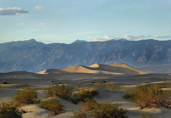 Furnace Creek Photograph - Death Valley Dunes by Gordon Beck