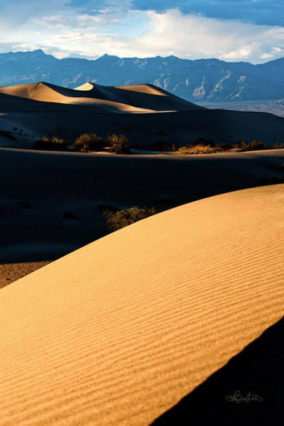 Photograph - Death Valley Dunes by Renee Sullivan