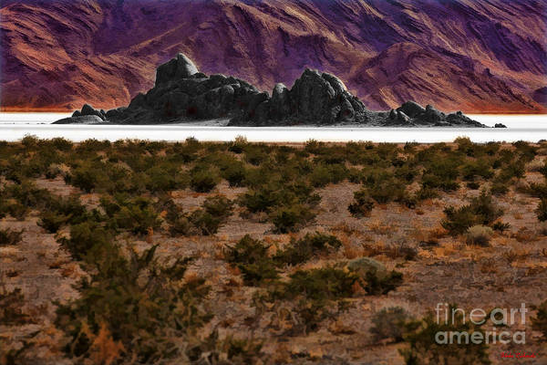 Photograph - Death Valley Race Track  A Closer Look by Blake Richards