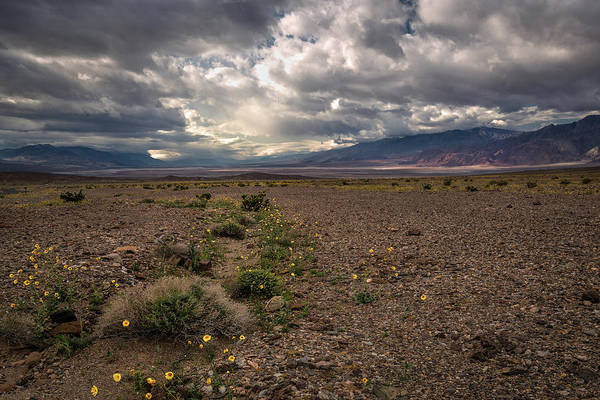 Photograph - Death Valley Storm by Rick Strobaugh