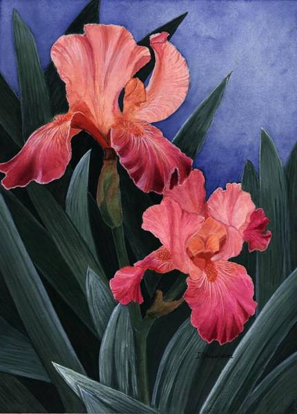 Painting - Debs Iris by Deborah Brown Maher