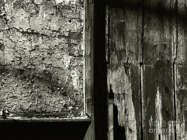 Photograph - Decay by Jeff Breiman