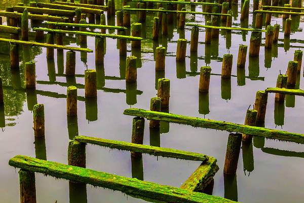 Rot Photograph - Decaying Old Dock by Garry Gay