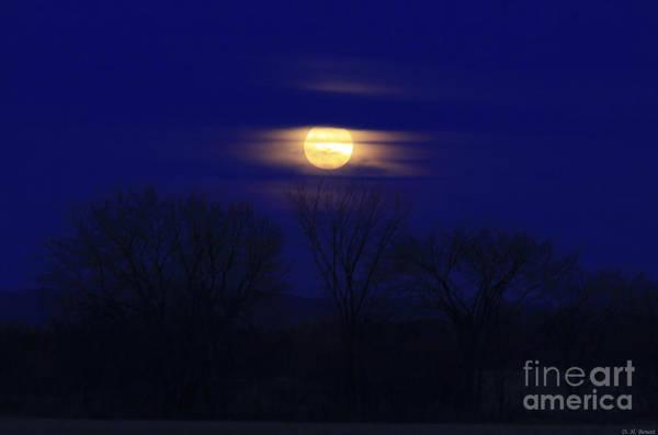 Photograph - December Moon by Deborah Benoit