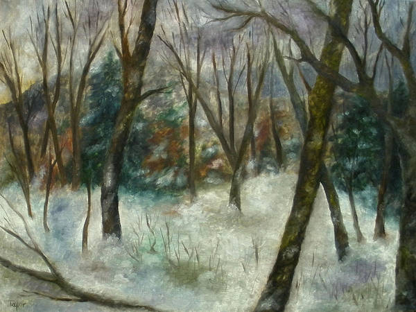 December On Cooper Hill Art Print