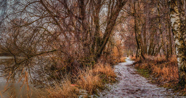 Photograph - December Path #h0 by Leif Sohlman