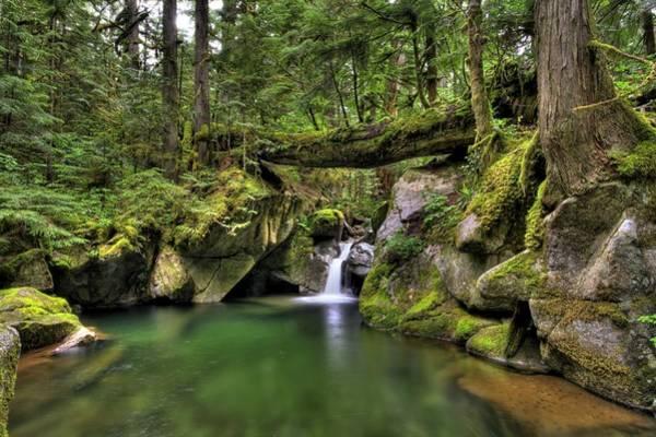Photograph - Deception Creek by Brad Granger