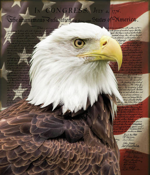 Photograph - Declaration Of Independence by Dale Kincaid