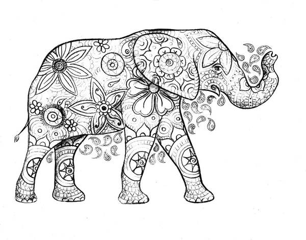 Drawing - Decorated Elephant In Black And White by Emily Page