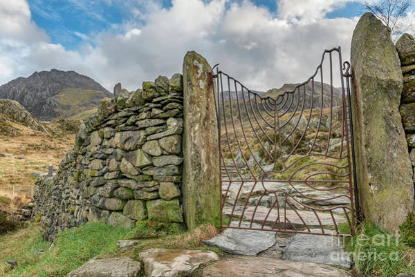 Iron Fence Wall Art - Photograph - Decorative Gate Snowdonia by Adrian Evans