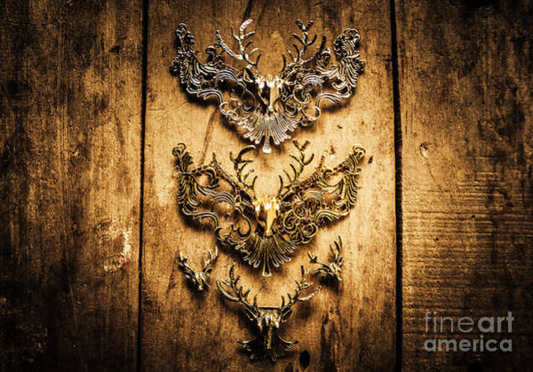 Wood Planks Photograph - Decorative Moose Emblems by Jorgo Photography - Wall Art Gallery