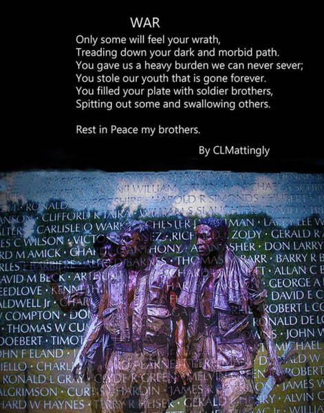 Photograph - Dedication To Vietnam Vets by Coleman Mattingly