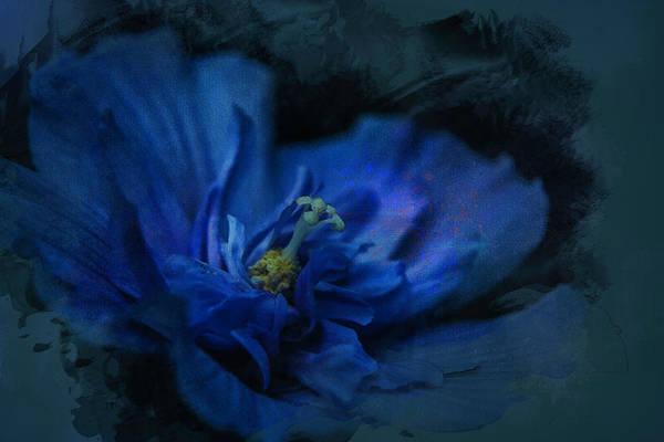 Digital Art - Deep Blue by Richard Ricci