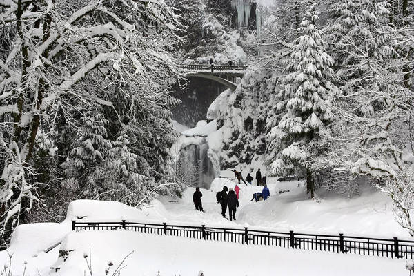 Photograph - Deep Snow Multnomah Falls by Wes and Dotty Weber