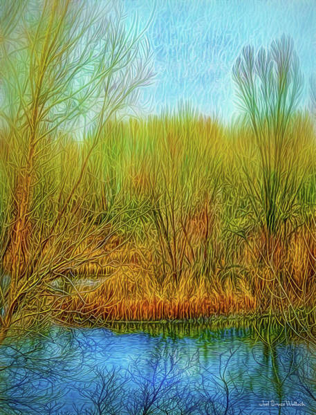Digital Art - Deep Winter Mood by Joel Bruce Wallach