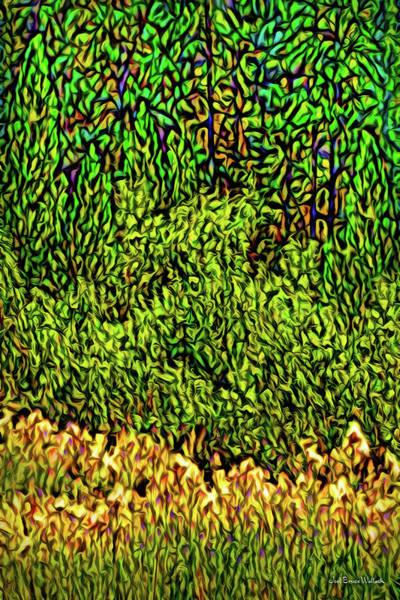 Digital Art - Deep Woods Discoveries by Joel Bruce Wallach