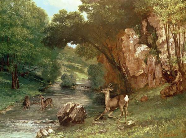 Riviere Wall Art - Photograph - Deer By A River by Gustave Courbet