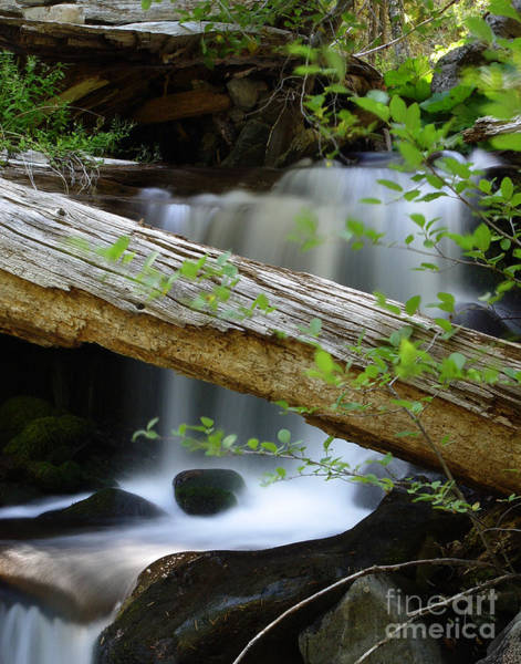 Wall Art - Photograph - Deer Creek 13 by Peter Piatt