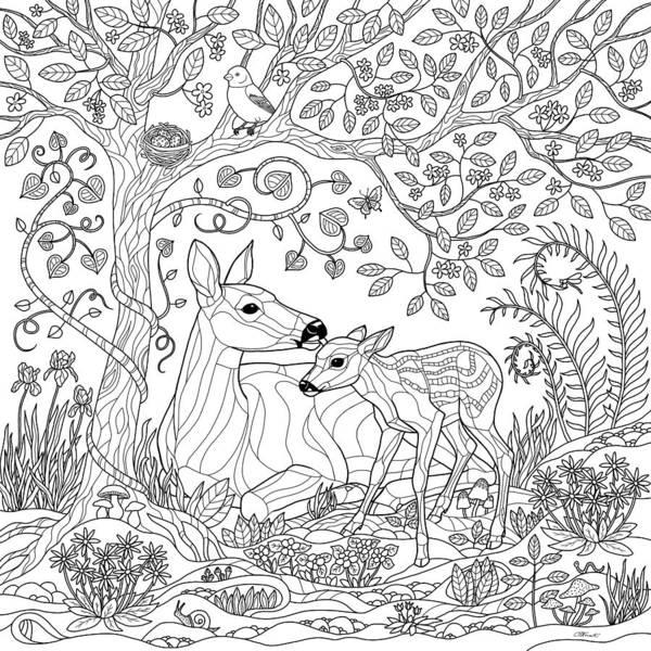 Ferns Digital Art - Deer Fantasy Forest Coloring Page by Crista Forest