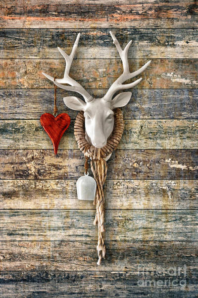 Kopf Photograph - Deer Heart - Hirschherz by ARTSHOT  - Photographic Art