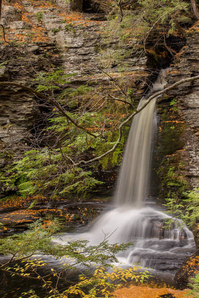 Photograph - Deer Leap Falls by Sara Hudock